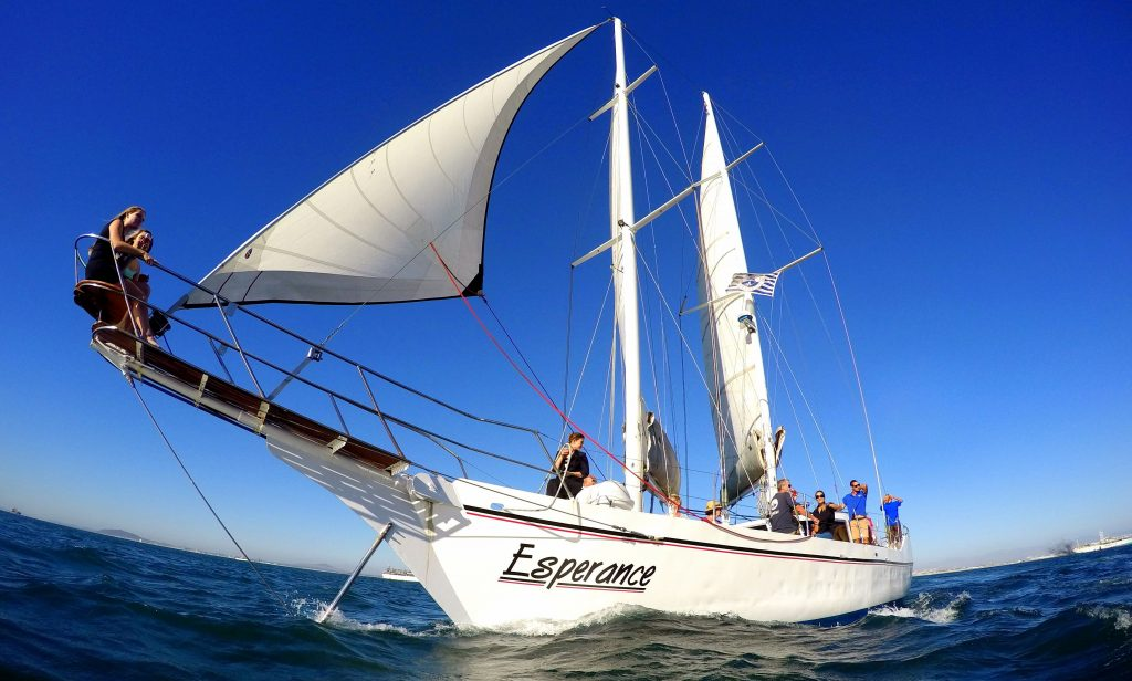 Waterfront Charters Harbour & Bay Cruise