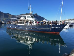 Glass bottomed boat Cape town