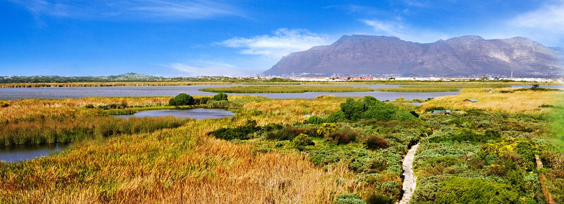 Rondevlei-Nature-Reserve-cape-town