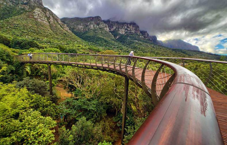 kirstenbosch-national-botanical-gardens